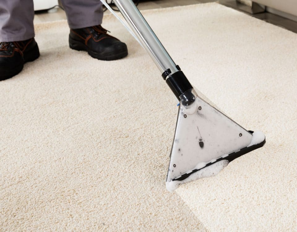 Sepcialist cleaning carpet with carpet cleaner
