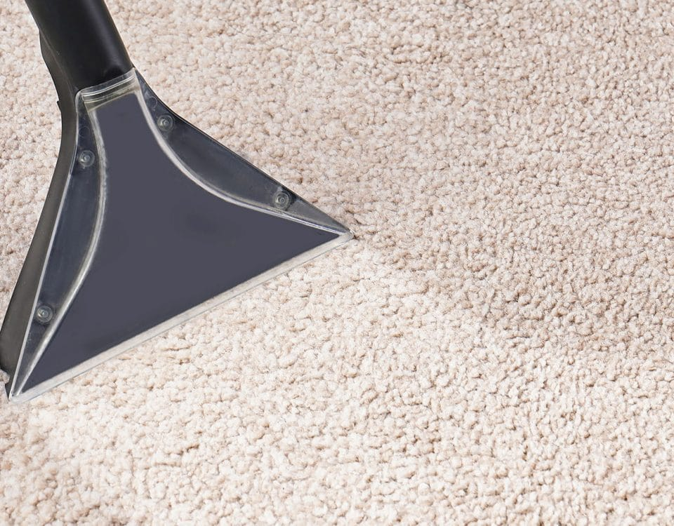 Person cleaning carpet with carpet cleaner